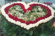 Огромный выбор цветов! Доставка по Харькову - Бесплатно!!!