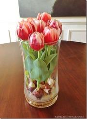 Тюльпаны в горшке букеты