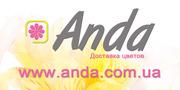 Заказ и доставка цветов киев недорого