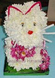 Котик из живых цветов